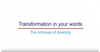 Video Transformation in your words: The richness of diversity